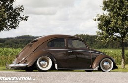 Bagged VW Beetle Bug
