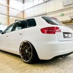 Bilsport Performance & Custom Motor Show (52)