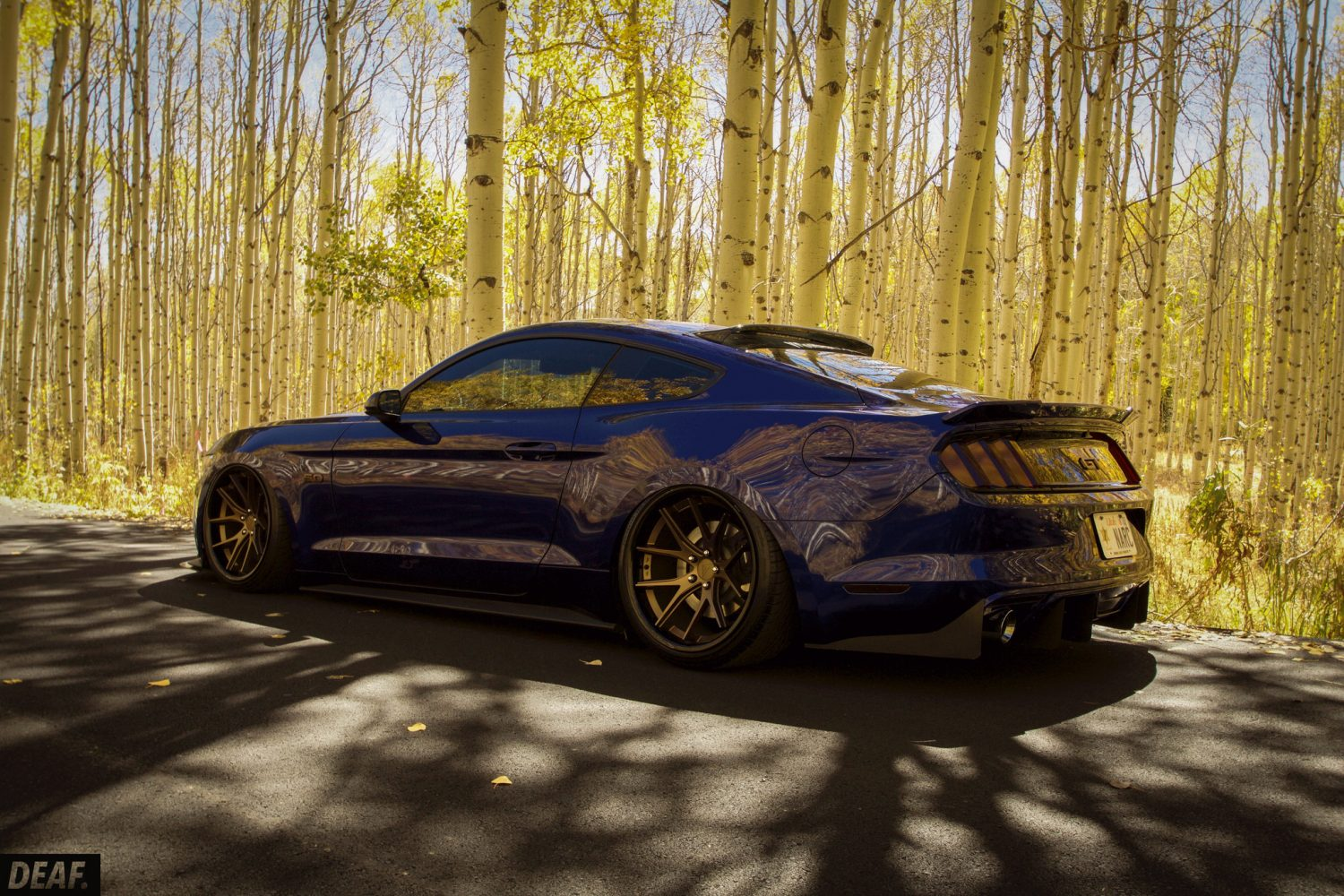 Ford Mustang Sitting Right Stancenation Form Gt Function