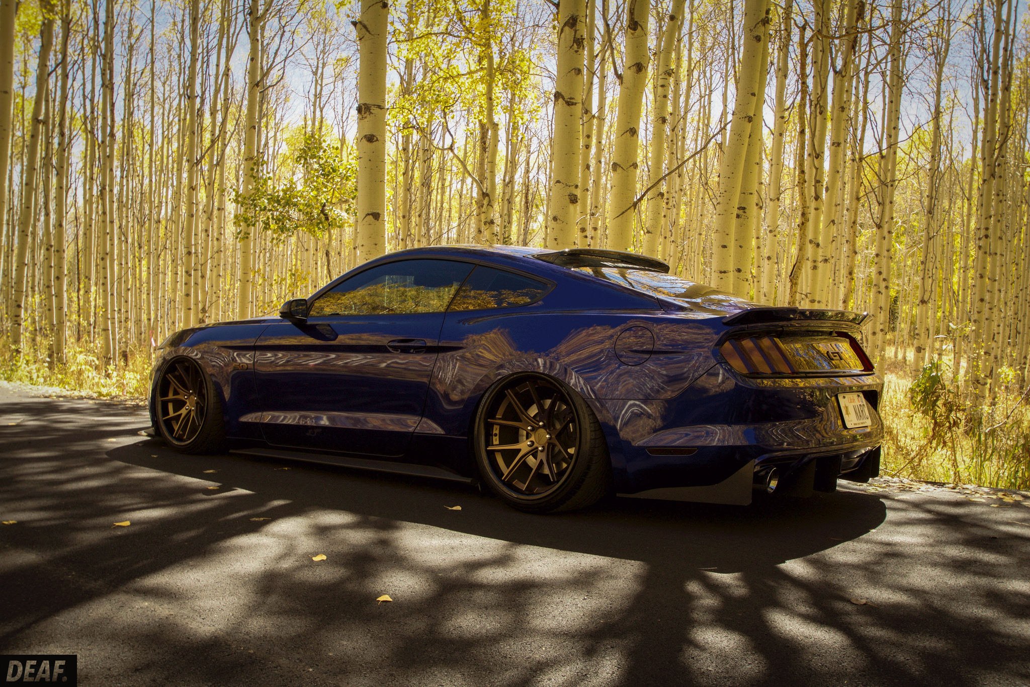Stanced Mustang | www.galleryhip.com - The Hippest Pics S10 Hellaflush